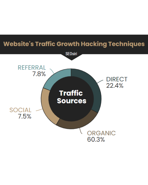 Website Traffic Growth Status