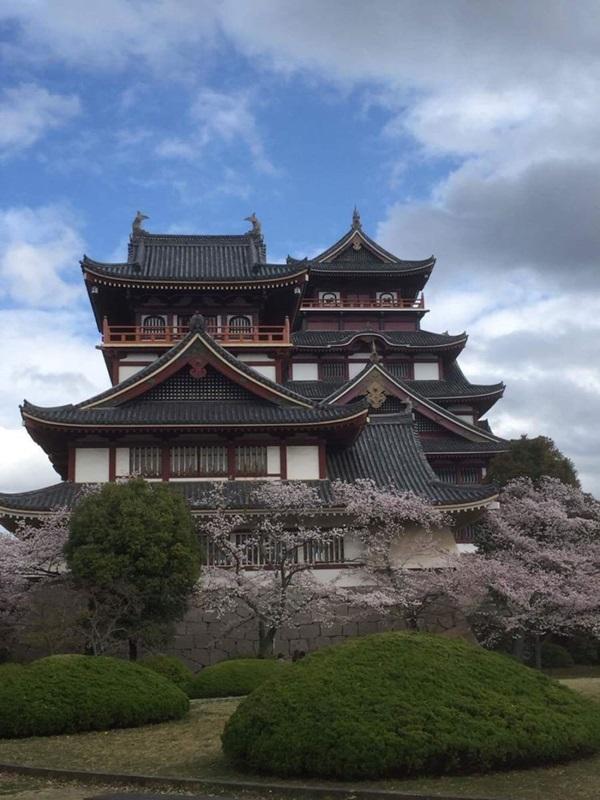 ปราสาทฟูชิมิ โมโมยามะ (Fushimi Momnoyama Castle: 伏見桃山) @ www.taiken.co