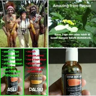 Minyak daun bungkus papua asli
