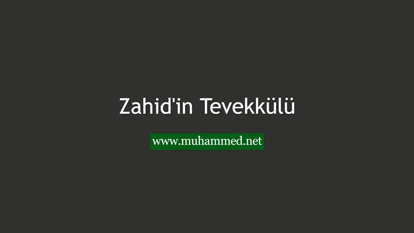 Zahid'in Tevekkülü