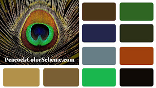 peacock color, peacock color scheme