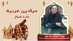 برنامج ميادين عربية