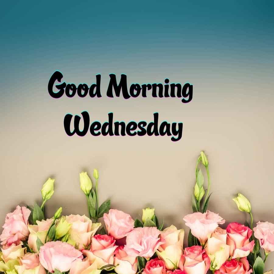 good morning wednesday greetings