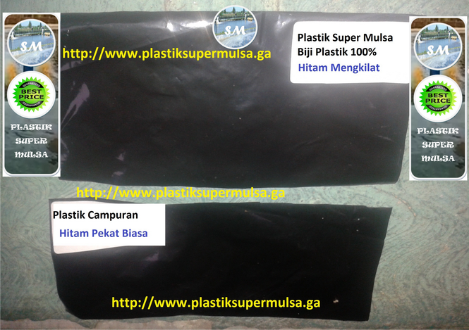 Toko Plastik Mulsa Tambak Murni 100% Udang Vanami