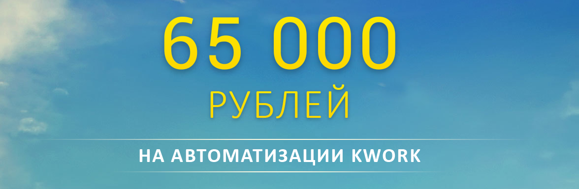 65 000 рублей на автоматизации Kwork – Отзывы