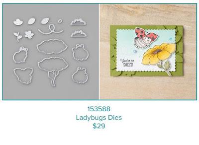 Ladybug Dies 153588