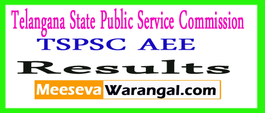 TSPSC Asst. Executive Engineer Exam Results 2017