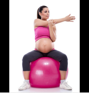 الحامل