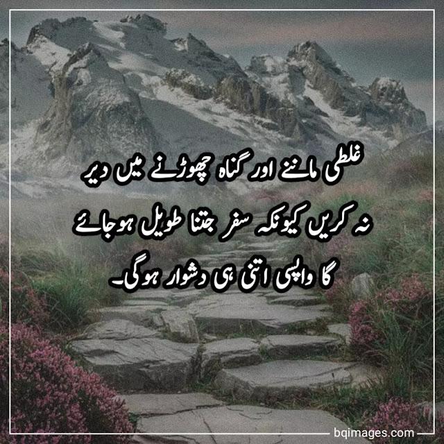 urdu aqwal image