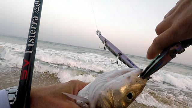 PORTADA%2BBLOG - Spinning de invierno desde playa 🌊🌊