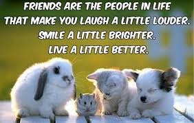 heart-touching-friendship-quotes-with-images-for-facebook