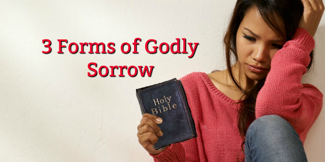 Let's take a look at the second beatitude: what godly sorrow looks like. #BibleLoveNotes #Bible #Devotions