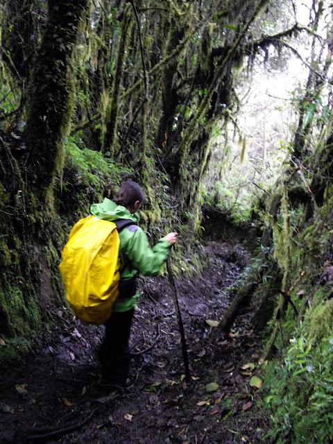 Acidente mas muita emoção na subida do vulcão TUNGURAHUA (com trekking) | Equador
