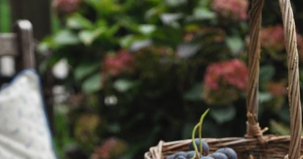 Focaccine dolci con uva e mirtilli