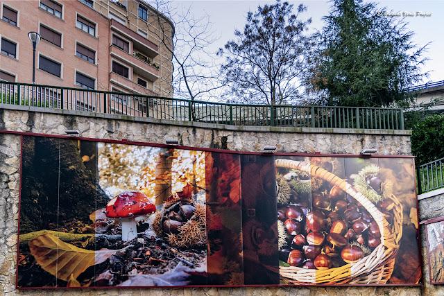 Mural de la Calle Castaños - Bilbao, por El Guisante Verde Project