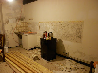 Removing old french tiles - Renovation project