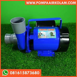 Pompa Air Kolam Nila