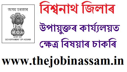 DC Office, Biswanath Recruitment 2019