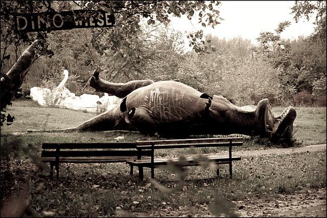 reflexiones finales: Park of dead dinosaurs