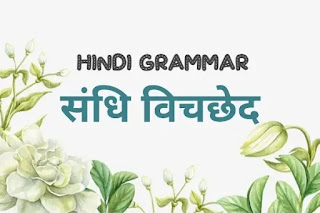 संधि किसे कहते हैं परिभाषा संधि किसे कहते हैं उसके प्रकार संधि किसे कहते हैं उदाहरण सहित sandhi in hindi