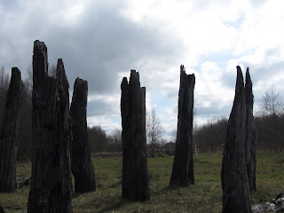 Sculpture in Lough Boora Parklands, County Offaly