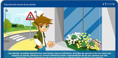 http://repositorio.educa.jccm.es/portal/odes/conocimiento_del_medio/las_plantas/contenido/cm07_oa04_es/index.html