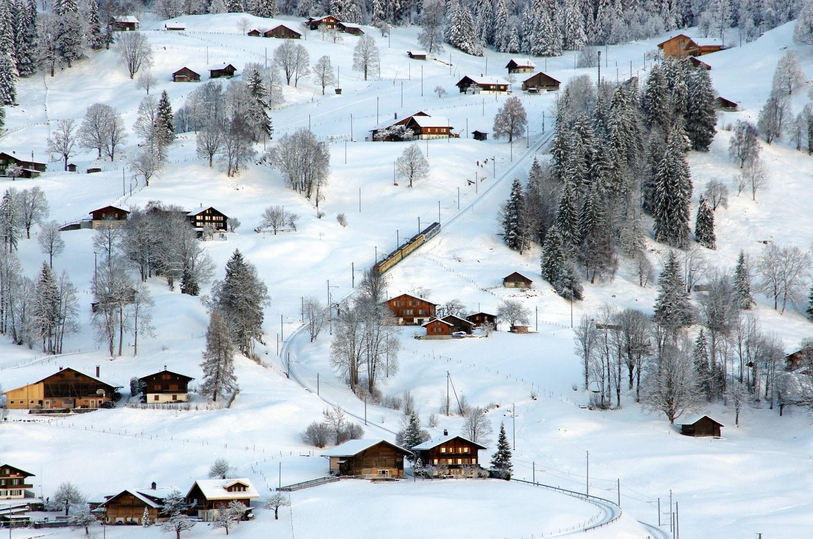 Grindelwald Switzerland Train Winter