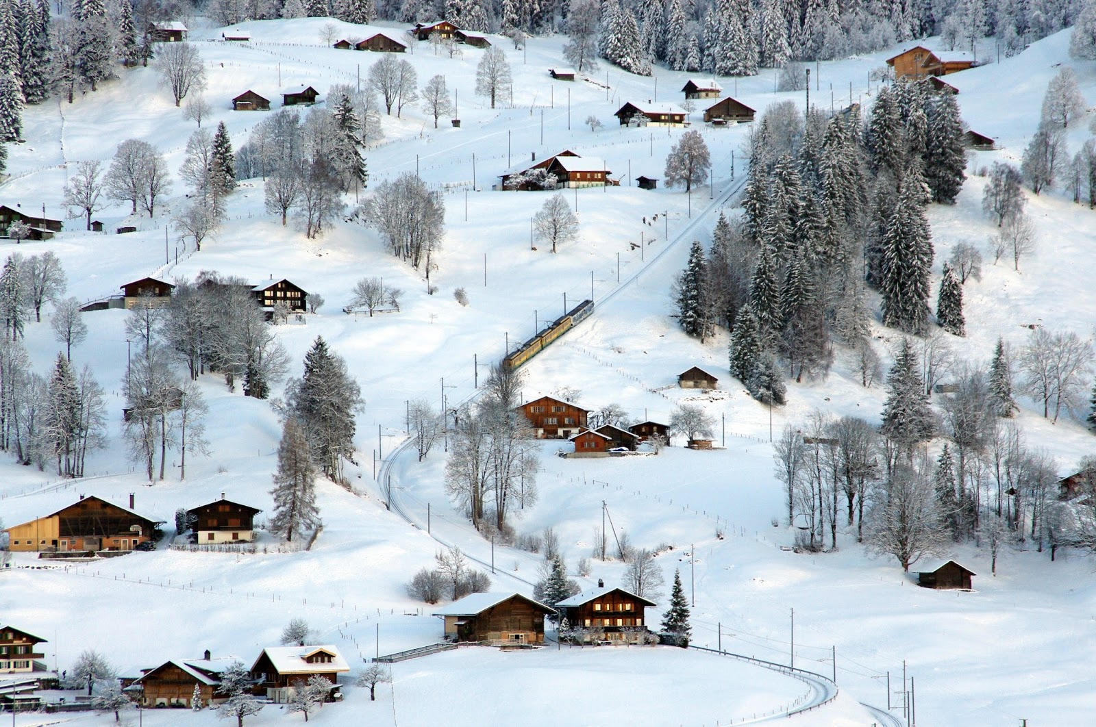 Grindelwald Switzerland Train Winter