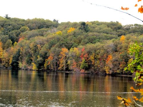 HArdy Dam pond