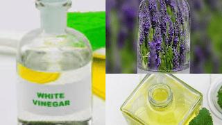 Désinfectants naturels - Remplacez 5 nettoyants de cuisine par 1 produit de nettoyage naturel