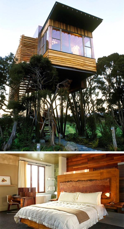 Hapuku Lodge together with Tree Houses