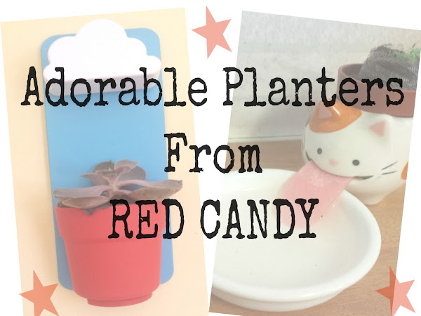 Adorable Planters From Red Candy {Review}