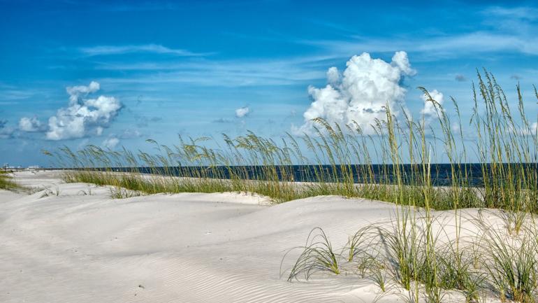 beaches on gulf coast florida