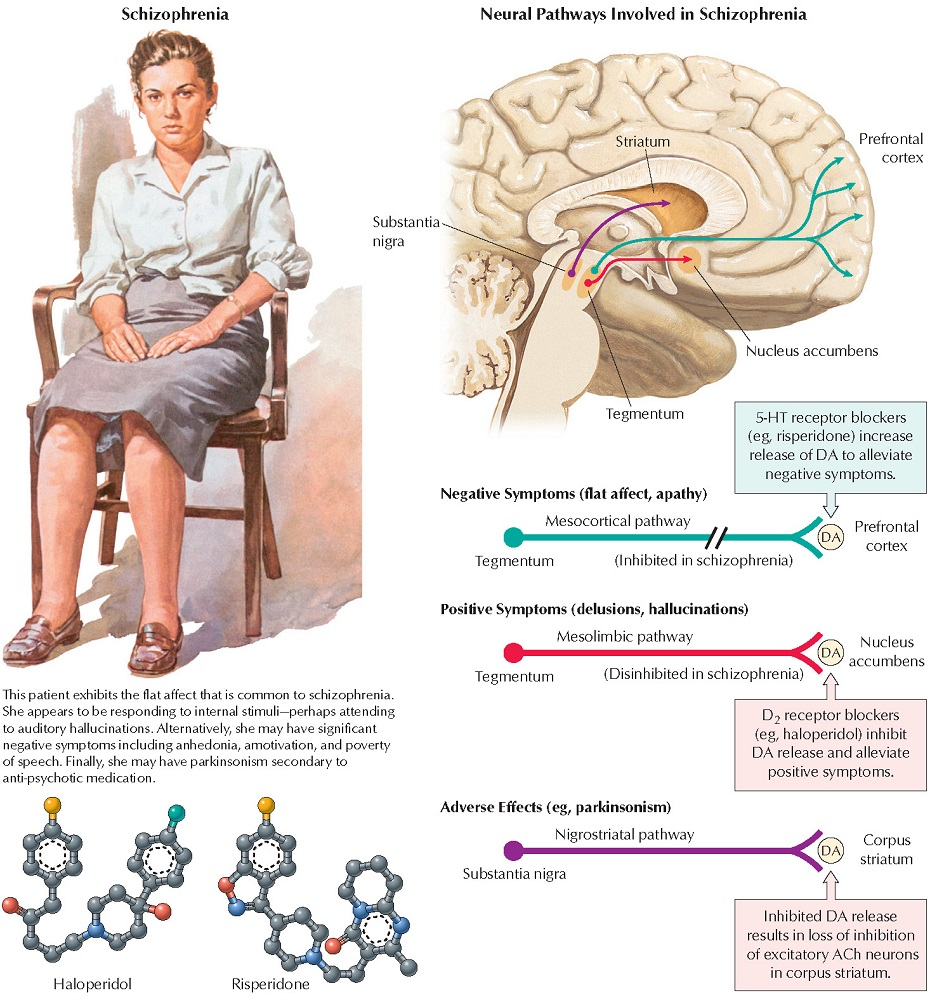 Psychosis and Dopamine Pathways