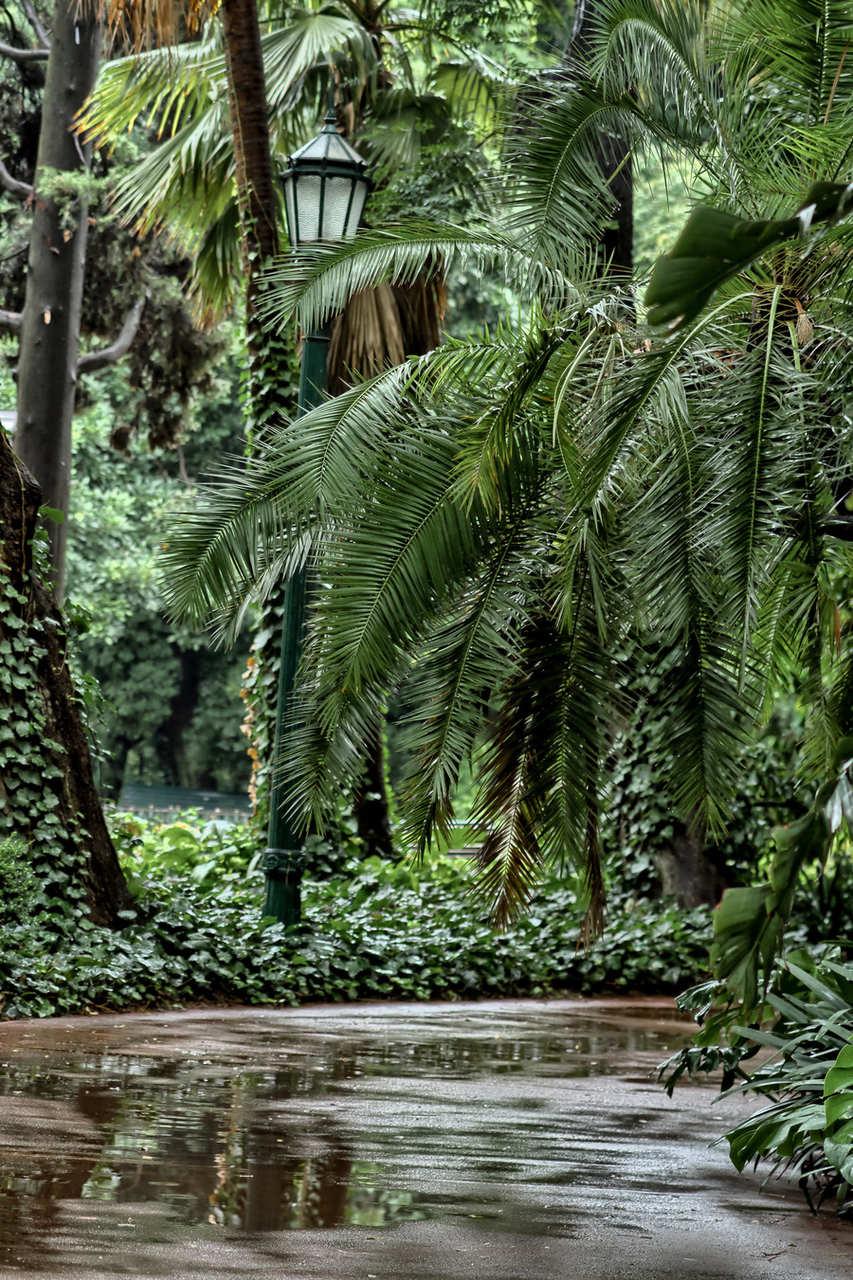 Bosques, jardins de Buenos Aires