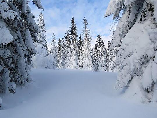 Zimowy plener na zboczu Złotek Grapy.