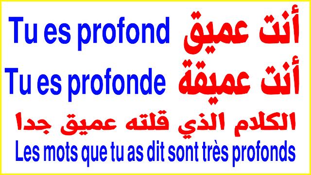 تعلم الفرنسية بسرعة لا توصف أكثر جمل الحديث بشكل رائع الدرس 105 parler en français