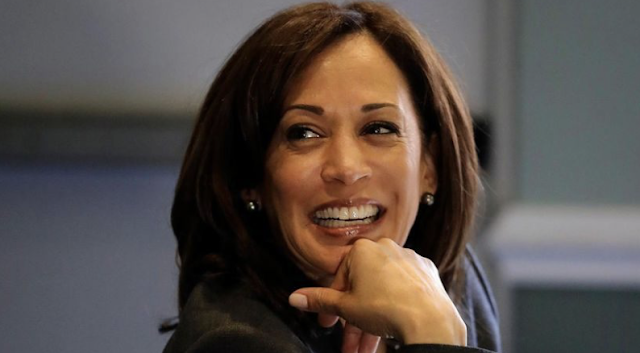 Kamala Harris dismisses concerns about Green New Deal price tag: 'It's not about a cost'