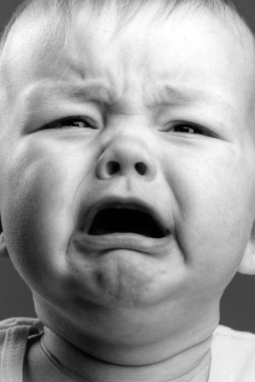 ambiente de leitura carlos romero cronica conto poesia narrativa pauta cultural literatura paraibana chico viana menino chorao criacao educacao infantil desobediencia crianca
