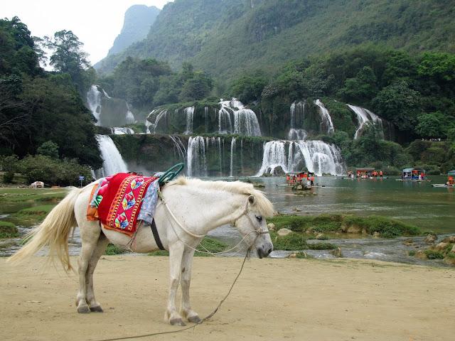 horse rafts ban gioc waterfall vietnam