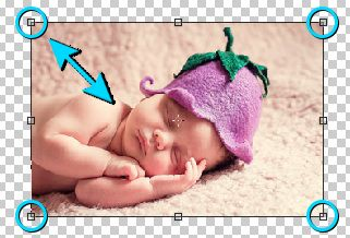Cara merubah ukuran gambar dengan membesarkan dan mengecilkan foto di Photoshop