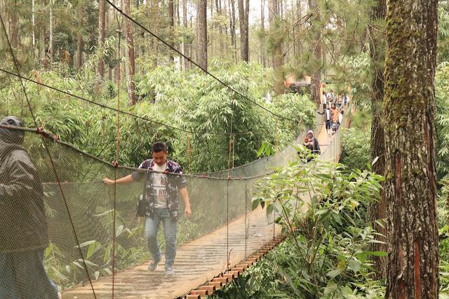 GREEN GRASS CIKOLE | Tempat Outbound di Lembang
