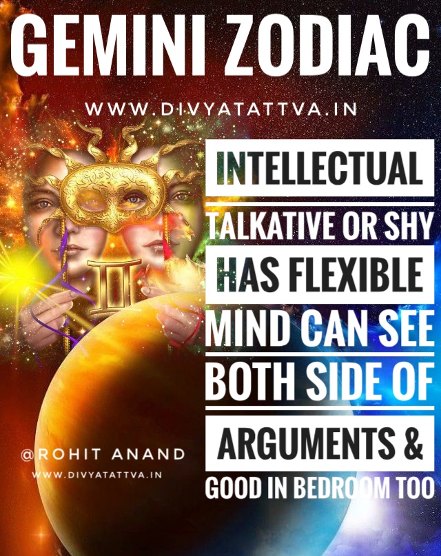 Funny Memes of Gemini Zodiac in Vedic Astrology by Best Astrologer Rohit Anand