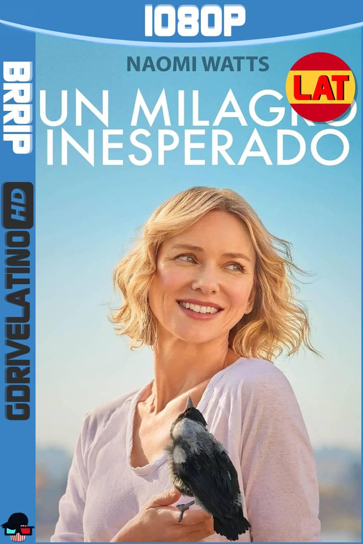 Un Milagro Inesperado (2020) BRRip 1080p Latino-Ingles MKV