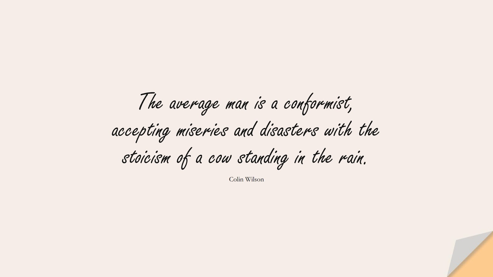 The average man is a conformist, accepting miseries and disasters with the stoicism of a cow standing in the rain. (Colin Wilson);  #StoicQuotes