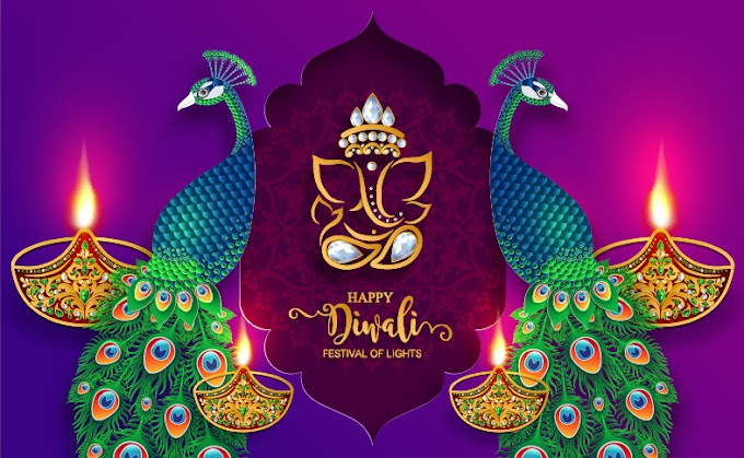 diwali background all free download Purple diwali background with peacock vector