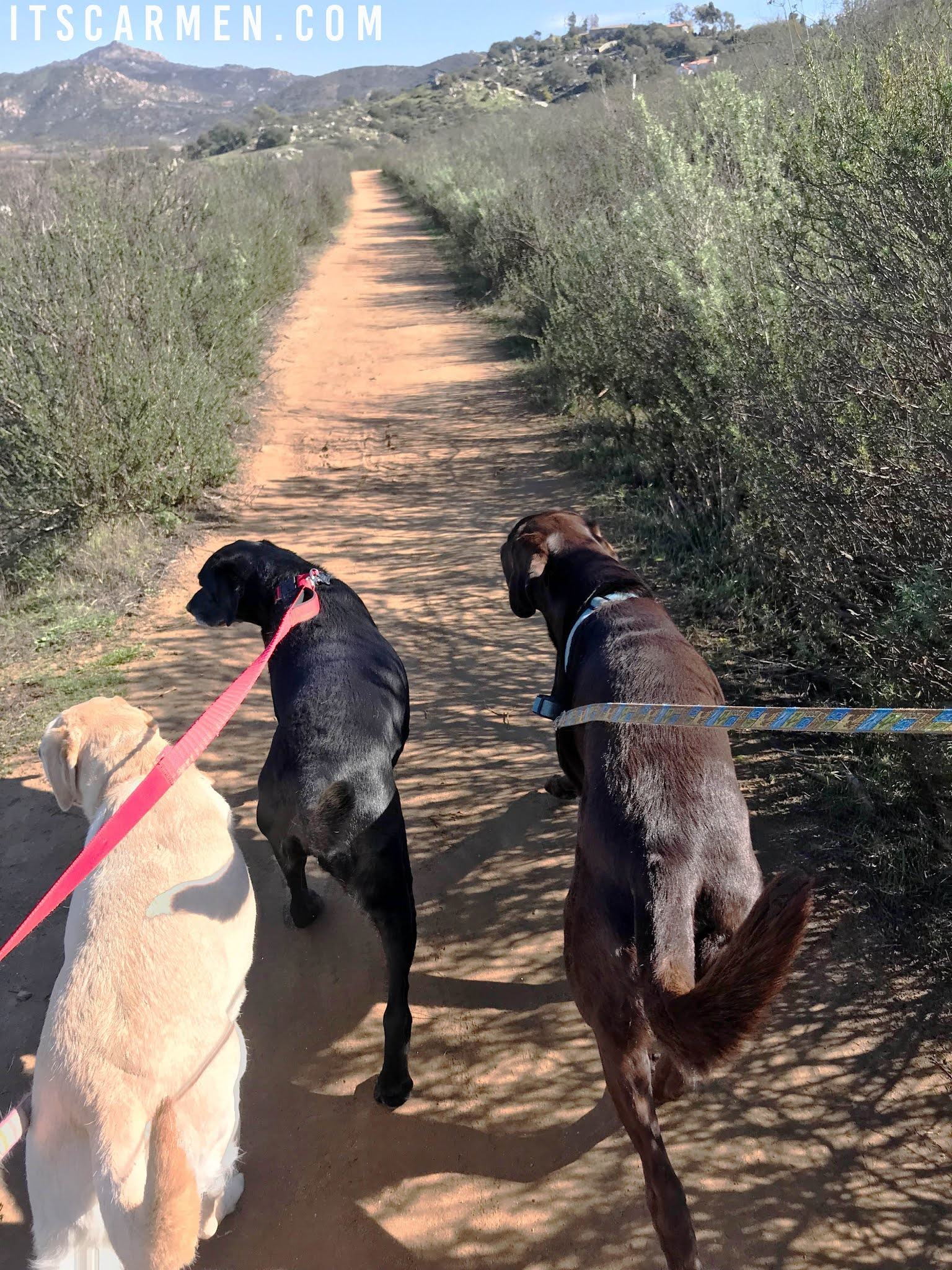 Hiking in Escondido & San Marcos, California - Things to Do in North County San Diego, California