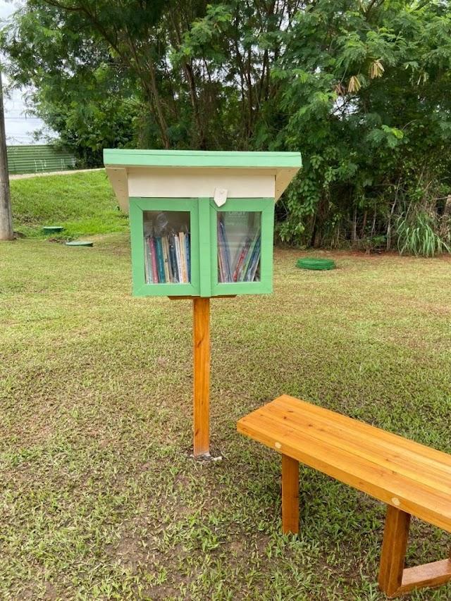 CONHECENDO AS LITTLE FREE LIBRARY ESPALHADAS POR BRASÍLIA