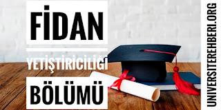 Fidan Yetiştiriciliği Bölümü Nedir İş İmkanları Maaşları Hakkında Bilgi