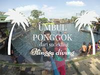 Wisata Umbul Ponggok, Dari Snorkling Hingga Diving